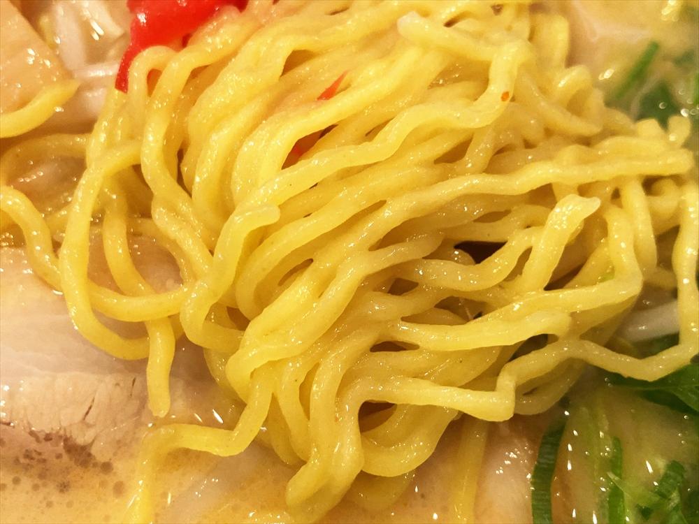 福ちゃん 坪井店「白湯らーめん」麺