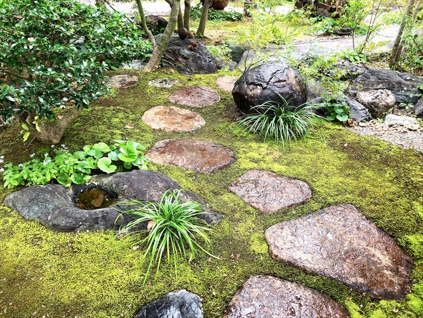 染地台 藪蕎麦の庭園