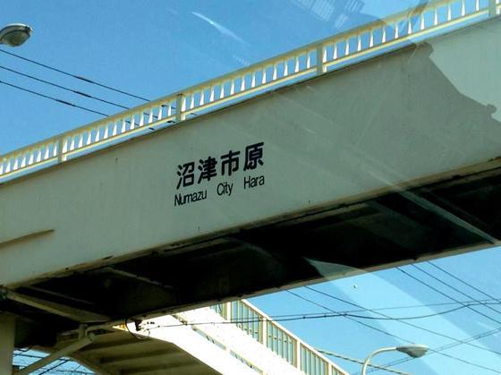 ラーメン はっせん【魚らーめん】 @田方郡函南町